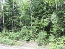 Terrain à vendre à Chertsey, Lanaudière, Chemin de la Grande-Vallée, 20019493 - Centris