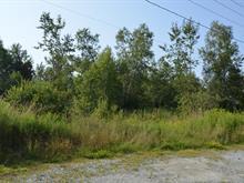 Terrain à vendre à Rock Forest/Saint-Élie/Deauville (Sherbrooke), Estrie, Chemin  Hamel, 19895810 - Centris
