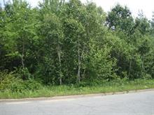 Terrain à vendre à Shawinigan, Mauricie, boulevard des Hêtres, 27828656 - Centris