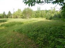 Lot for sale in Saint-Pierre-Baptiste, Centre-du-Québec, 1, Rue  Champêtre, 22952088 - Centris