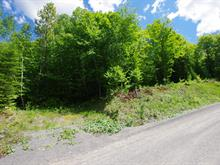 Lot for sale in Mont-Tremblant, Laurentides, Chemin de la Muraille, 26285879 - Centris