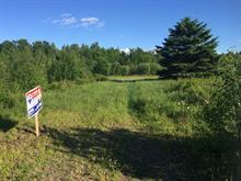 Terrain à vendre à Inverness, Centre-du-Québec, 50, Chemin de la Seigneurie, 28949300 - Centris