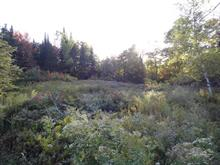 Lot for sale in Mille-Isles, Laurentides, 28, Chemin  Spinney, 17925147 - Centris