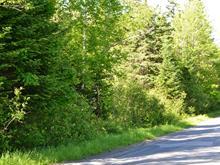 Terrain à vendre à Sainte-Marguerite-du-Lac-Masson, Laurentides, Montée  Gagnon, 10792471 - Centris