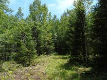 Lot for sale in Notre-Dame-du-Laus, Laurentides, Chemin du Lion, 10270729 - Centris