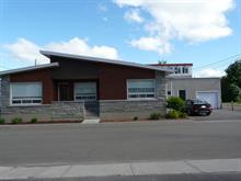 House for sale in Louiseville, Mauricie, 240, Avenue  Sainte-Élisabeth, 24813517 - Centris