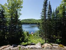 Lot for sale in Saint-Michel-des-Saints, Lanaudière, Chemin  Sakanimi, 28414633 - Centris