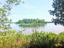 Lot for sale in Nominingue, Laurentides, Chemin du Tour-du-Lac, 11431030 - Centris