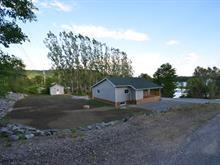 House for sale in Notre-Dame-de-Pontmain, Laurentides, 65, Chemin du Lac-au-Foin, 19426450 - Centris