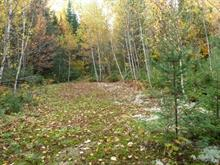Lot for sale in Mandeville, Lanaudière, Chemin de la Branche-à-Gauche, 11889374 - Centris