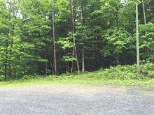 Land for sale in Austin, Estrie, Chemin du Grand-Pic, 16569995 - Centris