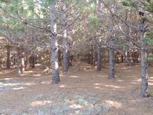 Terre à vendre à Saint-Eugène-de-Guigues, Abitibi-Témiscamingue, Chemin des 6e-et-7e-Rangs, 9549531 - Centris