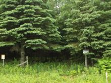 Lot for sale in Adstock, Chaudière-Appalaches, 111, Route  269, 19399566 - Centris