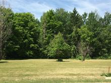 Lot for sale in Shawville, Outaouais, Rue  Centre, 15187062 - Centris
