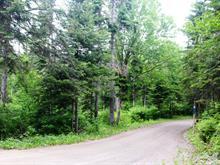 Terrain à vendre à Sainte-Anne-des-Monts, Gaspésie/Îles-de-la-Madeleine, Route du Parc, 20672340 - Centris