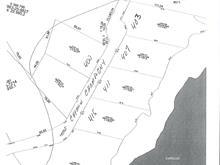 Lot for sale in Larouche, Saguenay/Lac-Saint-Jean, 400, Chemin  Champigny, 18746491 - Centris