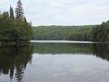 Terrain à vendre à Rivière-Rouge, Laurentides, Montée des Lacs-Noirs, 13030494 - Centris