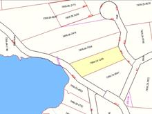 Lot for sale in Val-des-Monts, Outaouais, 17, Chemin  Hall, 14516788 - Centris
