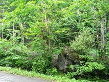 Terrain à vendre à Sainte-Anne-des-Lacs, Laurentides, Chemin des Mouettes, 13398525 - Centris