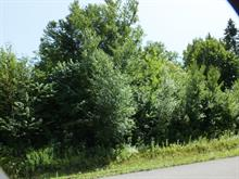 Lot for sale in Fossambault-sur-le-Lac, Capitale-Nationale, 33, Rue de la Pointe-aux-Bleuets, 11969893 - Centris