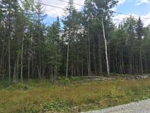 Lot for sale in Ascot Corner, Estrie, Rue de l'Everest, 28016742 - Centris