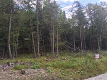 Lot for sale in Ascot Corner, Estrie, Rue de l'Everest, 26196721 - Centris