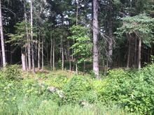 Lot for sale in Saint-Raymond, Capitale-Nationale, Route du Domaine, 22153092 - Centris