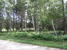 Lot for sale in Nominingue, Laurentides, Rue  Saint-Joseph, 15955523 - Centris