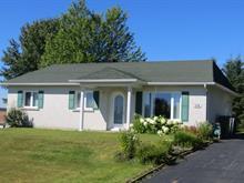 Maison à vendre à Lac-Etchemin, Chaudière-Appalaches, 316, Rue de la Colline, 12208501 - Centris
