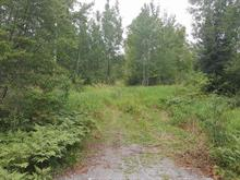 Lot for sale in Trécesson, Abitibi-Témiscamingue, Route  111, 25681868 - Centris