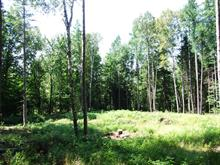 Lot for sale in Saint-Sauveur, Laurentides, Chemin  Elliott, 22001697 - Centris