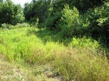 Lot for sale in Lachute, Laurentides, Chemin de Dunany, 12635344 - Centris