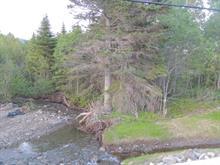 Terrain à vendre à Gaspé, Gaspésie/Îles-de-la-Madeleine, boulevard de Forillon, 11276651 - Centris