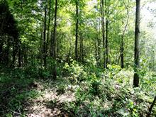 Lot for sale in Cleveland, Estrie, Chemin  Brown, 23545944 - Centris