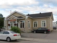 Bâtisse commerciale à vendre à Mont-Laurier, Laurentides, 370, Rue de la Madone, 24408141 - Centris