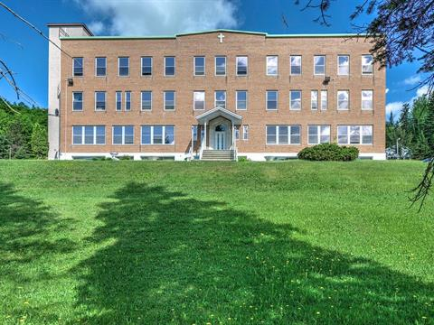 Income properties for sale in Chertsey, Lanaudière, 1601 - 1621, Rue  Rochon, 26686252 - Centris