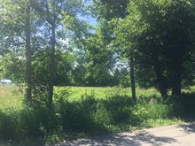 Lot for sale in Saint-André-d'Argenteuil, Laurentides, Rue  Lalande, 17903269 - Centris