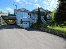 Maison à vendre à Marston, Estrie, 154, Chemin  Ernest-Martin, 23884291 - Centris