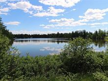 Lot for sale in Saint-Honoré, Saguenay/Lac-Saint-Jean, Rue  Dubois, 11259195 - Centris