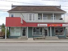 Immeuble à revenus à vendre à Lorrainville, Abitibi-Témiscamingue, 20, Rue  Notre-Dame Est, 18608904 - Centris