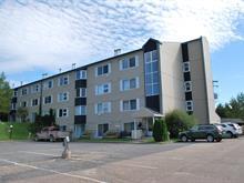 Loft/Studio for sale in Saint-Ferréol-les-Neiges, Capitale-Nationale, 105, Rue de la Tourbe, apt. 313, 10619630 - Centris