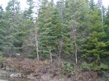 Lot for sale in Sainte-Agathe-des-Monts, Laurentides, Rue des Huards, 23465439 - Centris