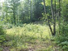 Lot for sale in Otter Lake, Outaouais, 182, Chemin  Larose, 22531146 - Centris