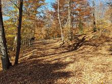 Lot for sale in Morin-Heights, Laurentides, Chemin  Lakeshore, 21375305 - Centris