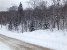 Terrain à vendre à Saint-Donat, Lanaudière, Chemin du Mont-Jasper, 15015414 - Centris