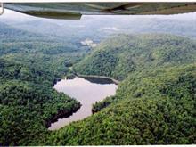 Terre à vendre à Amherst, Laurentides, Chemin des Rapides, 27065026 - Centris