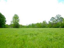 Terre à vendre à Hudson, Montérégie, Rue  Butternut, 21056349 - Centris