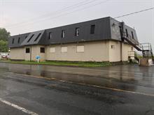 Bâtisse commerciale à vendre à Sainte-Anne-de-Sabrevois, Montérégie, 2126, Route  133, 11260454 - Centris