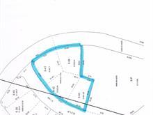 Terrain à vendre à Sainte-Agathe-des-Monts, Laurentides, 40, Rue  Madeleine, 27290720 - Centris