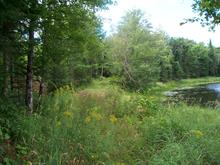 Lot for sale in Brownsburg-Chatham, Laurentides, Chemin de Horrem, 13422056 - Centris